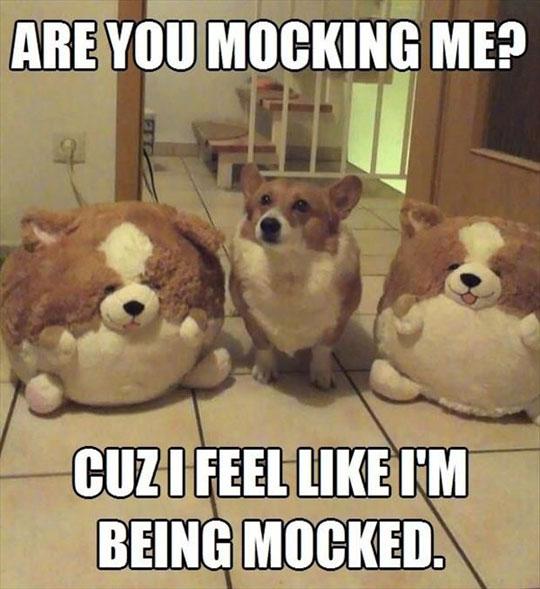 cool-dog-stuffed-toys-similar