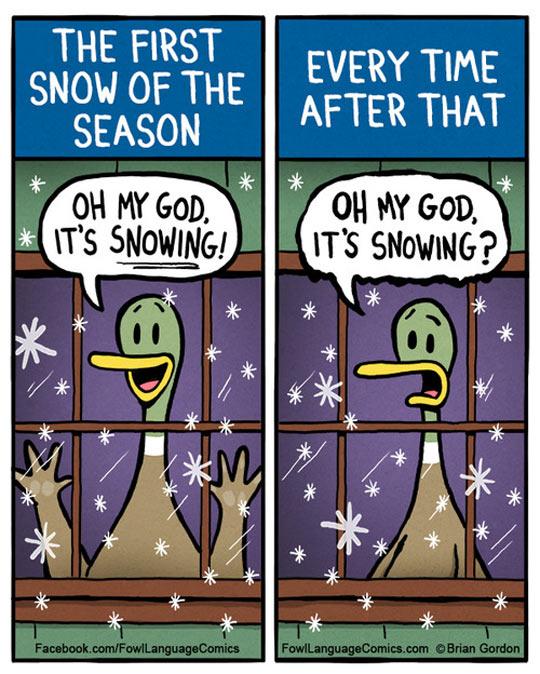 cool-duck-snow-season-comic