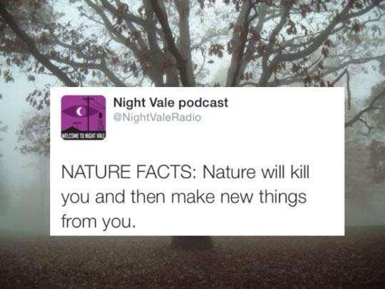 Nature Is So Cruel