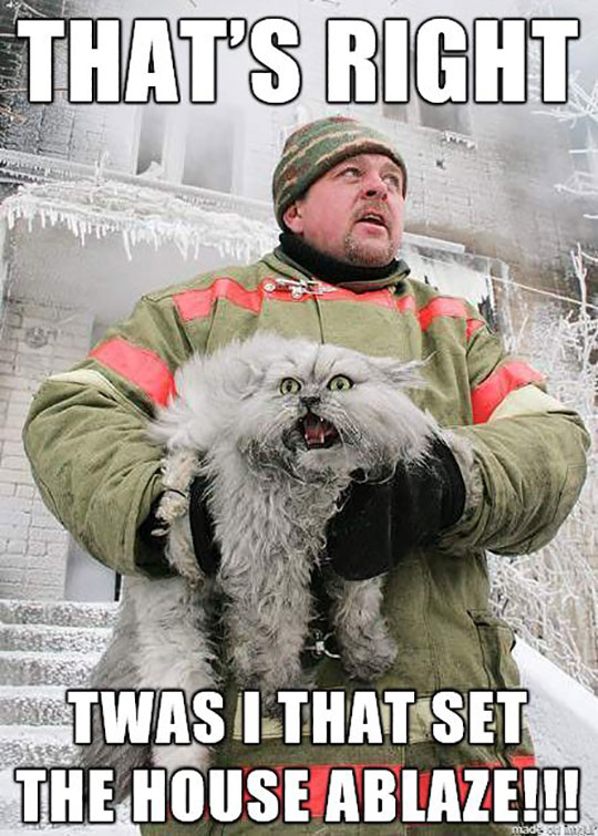 cool-firefighter-cat-rescue-screaming