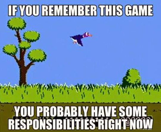 cool-game-duck-hunt-responsibilities