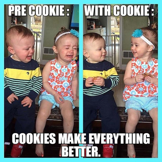 Cookies Fix Everything