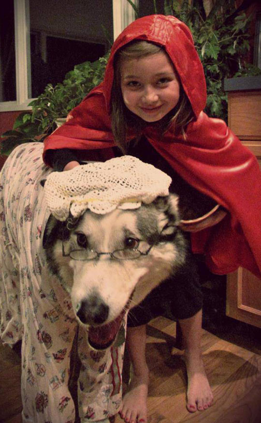 Just A Girl And Her Wolf
