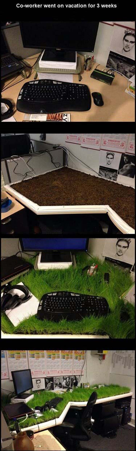 Hope He Likes His New Environmental Desk