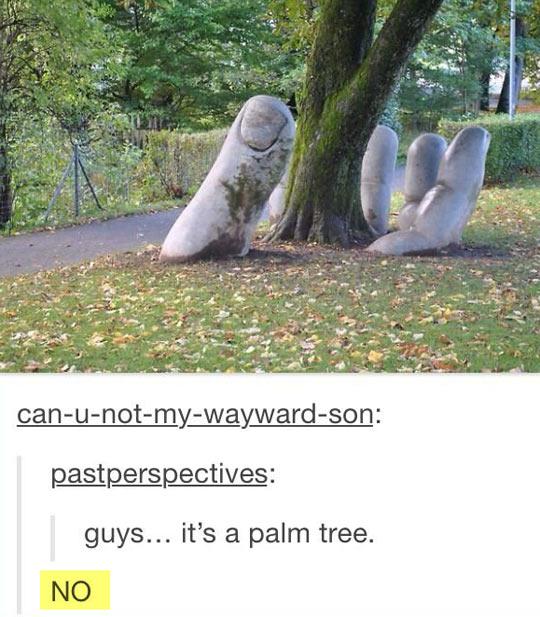 cool-palm-tree-hand-ground