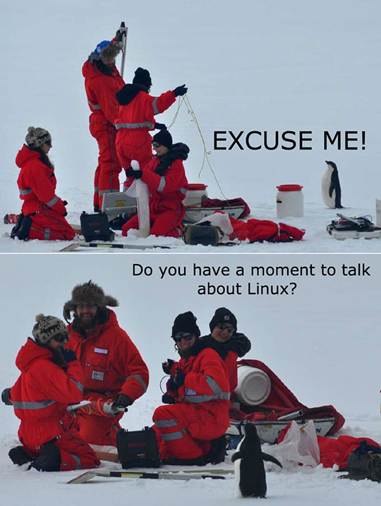 cool-penguin-snow-Linux-preaching
