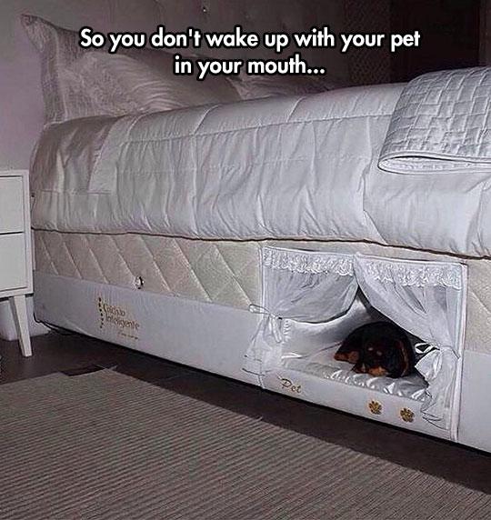 cool-pet-hole-mattress-bed