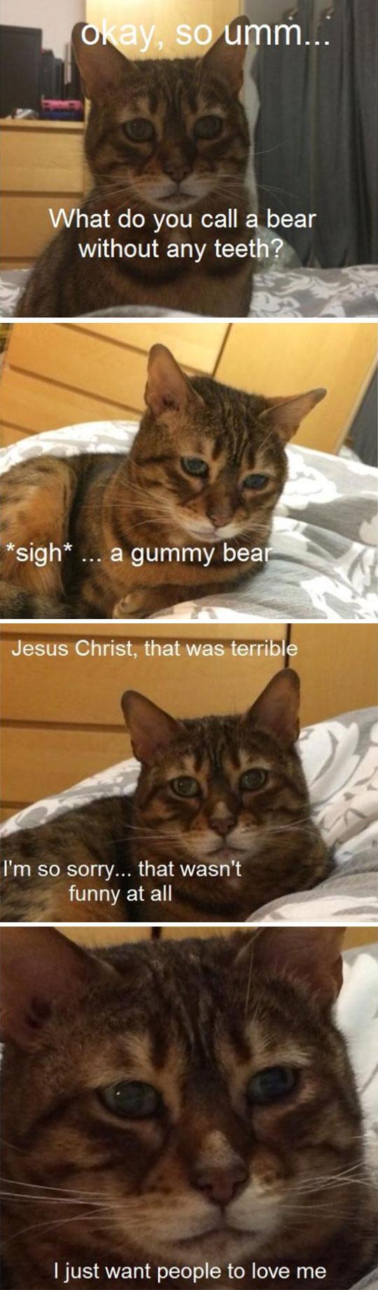 Sad Cat Tries Comedy