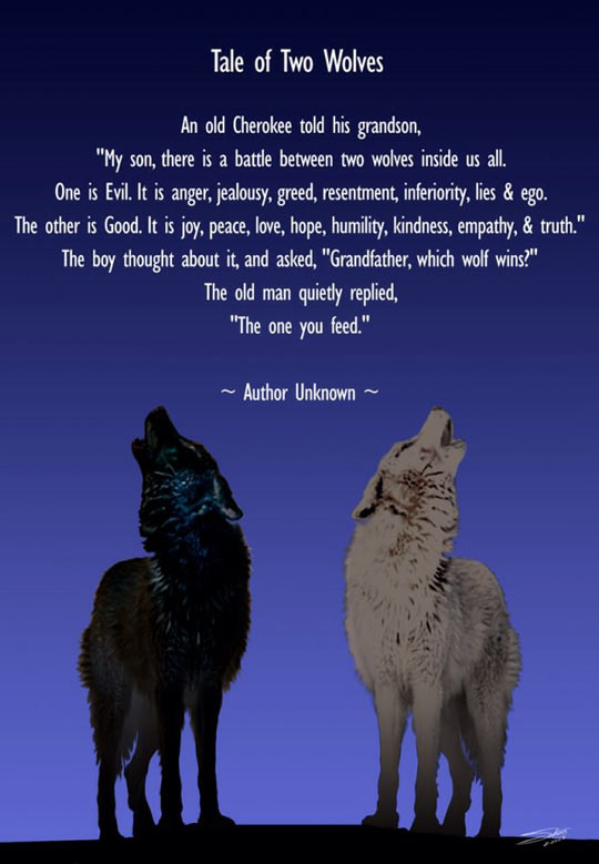 cool-tale-two-wolves-grandfather