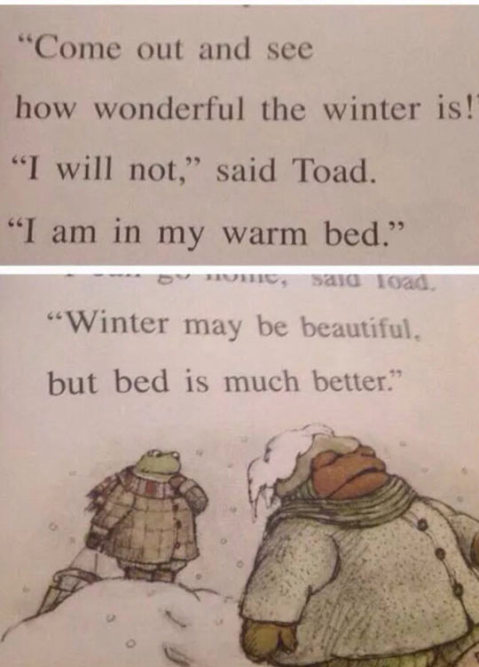 cool-toad-Winter-children-book-bed
