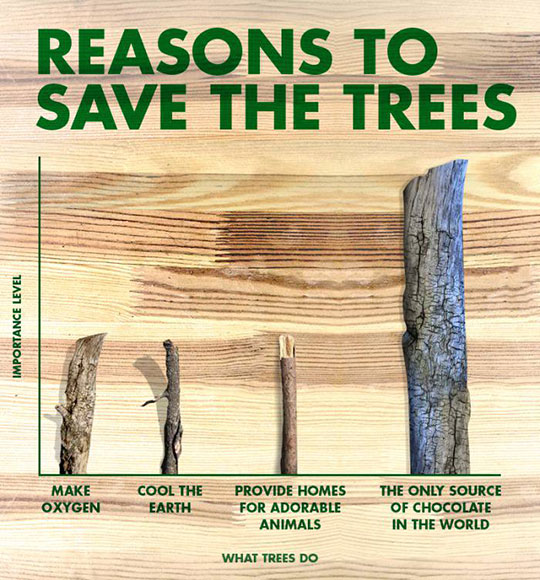 cool-tree-reasons-save-importance-level