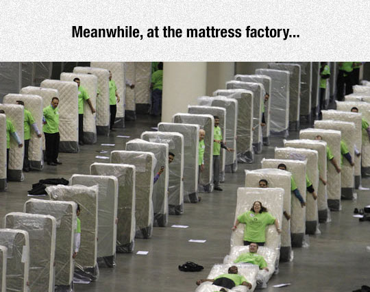 funny-mattress-factory-workers-domino