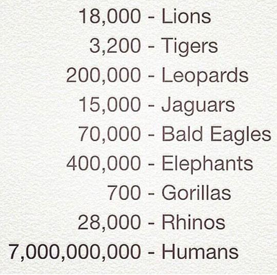 The World Is Unfair