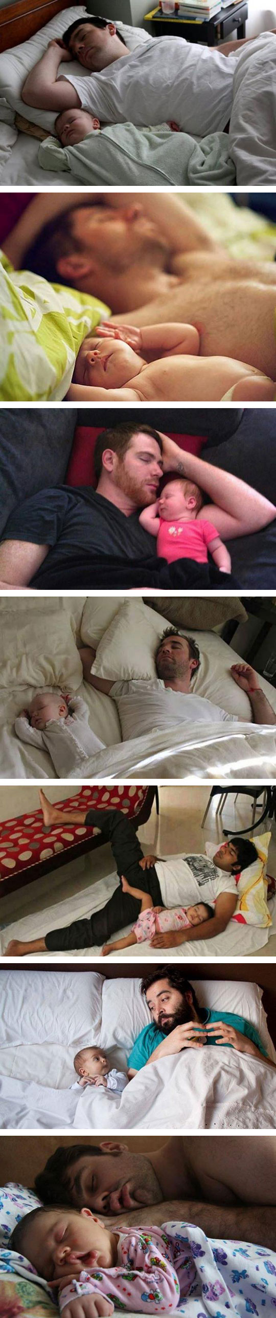 No Need For DNA Tests Here