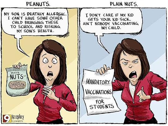 Peanuts And Plain Nuts