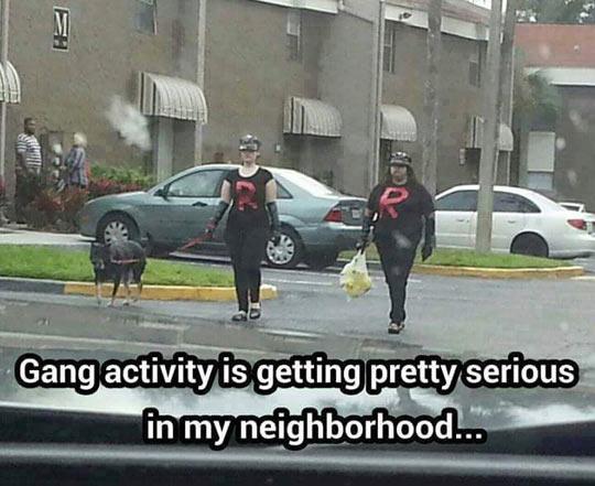 cool-Rocket-Team-Pokemon-neighbor-gang