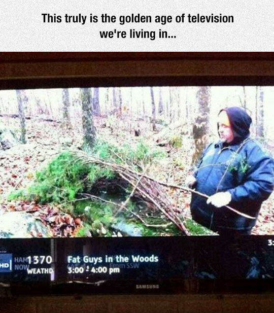 cool-TV-guide-show-fat-forest