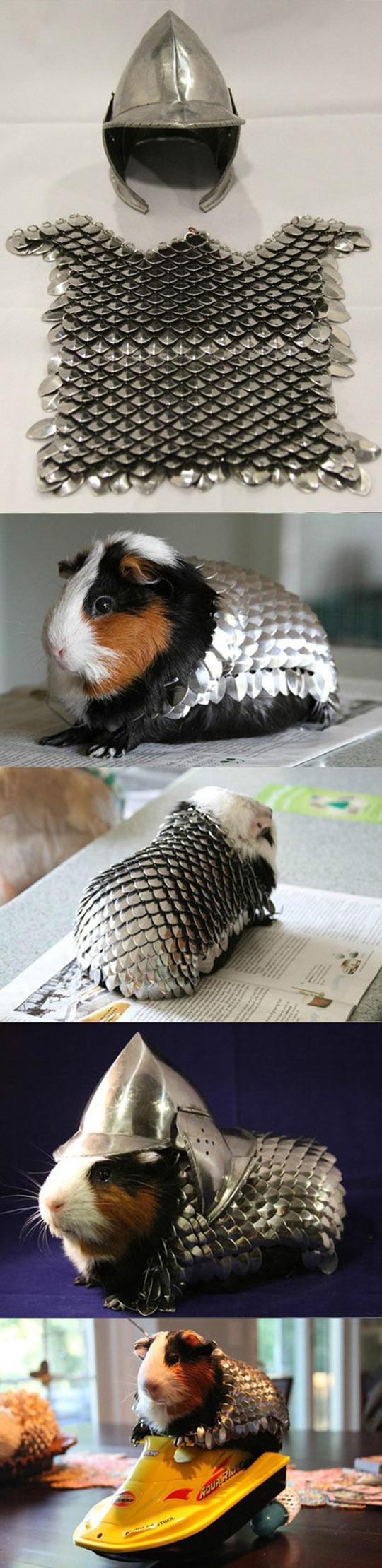 cool-armor-guinea-pig-helmet