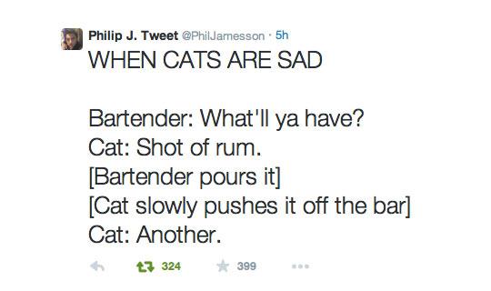 Sad Cat Walks Into A Bar