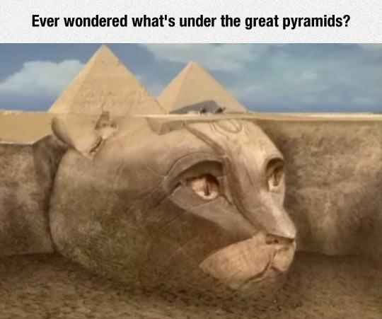 Wow, It