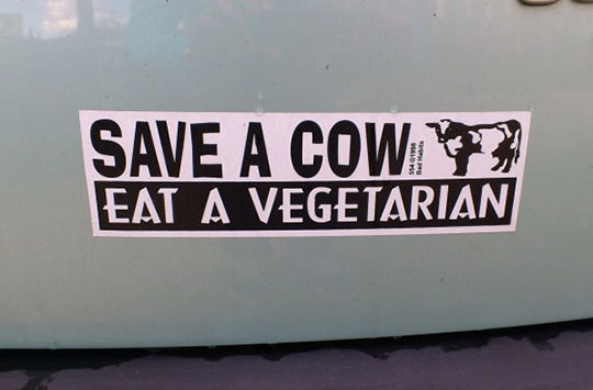 cool-cow-vegetarian-sticker-eating
