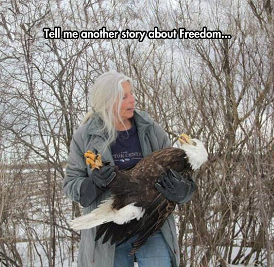 cool-eagle-woman-sleeping-rescue