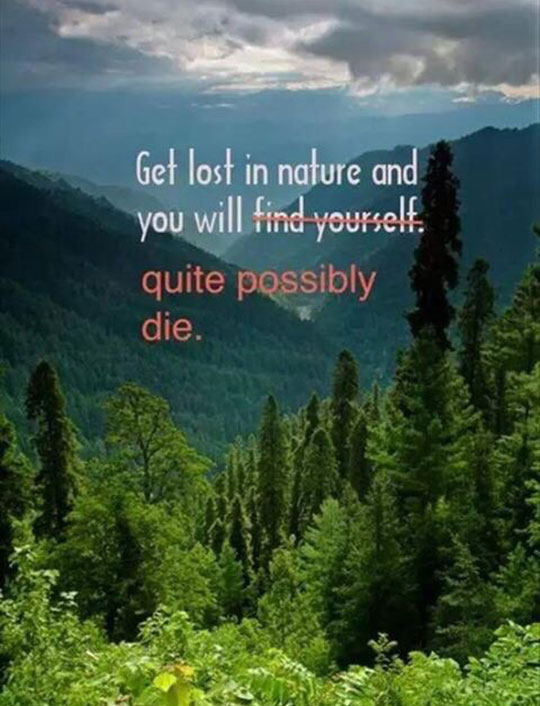 cool-nature-quote-forest-die