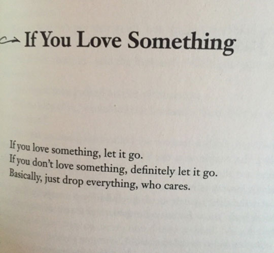If You Love Something, Read This