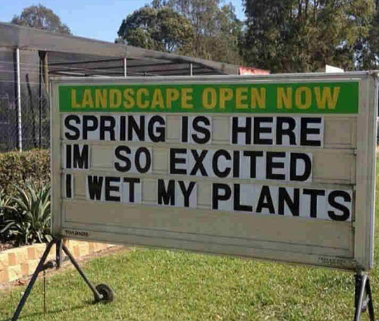 So Now That Spring Is Here