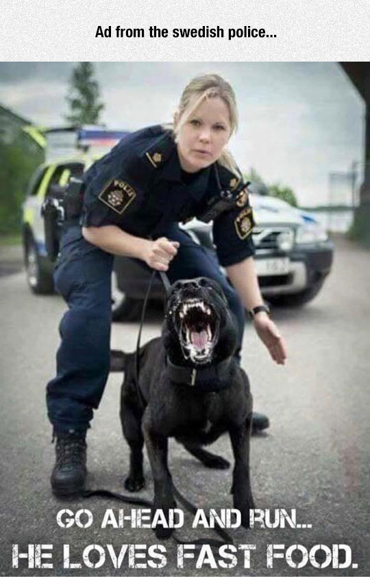 Swedish Police Doesn