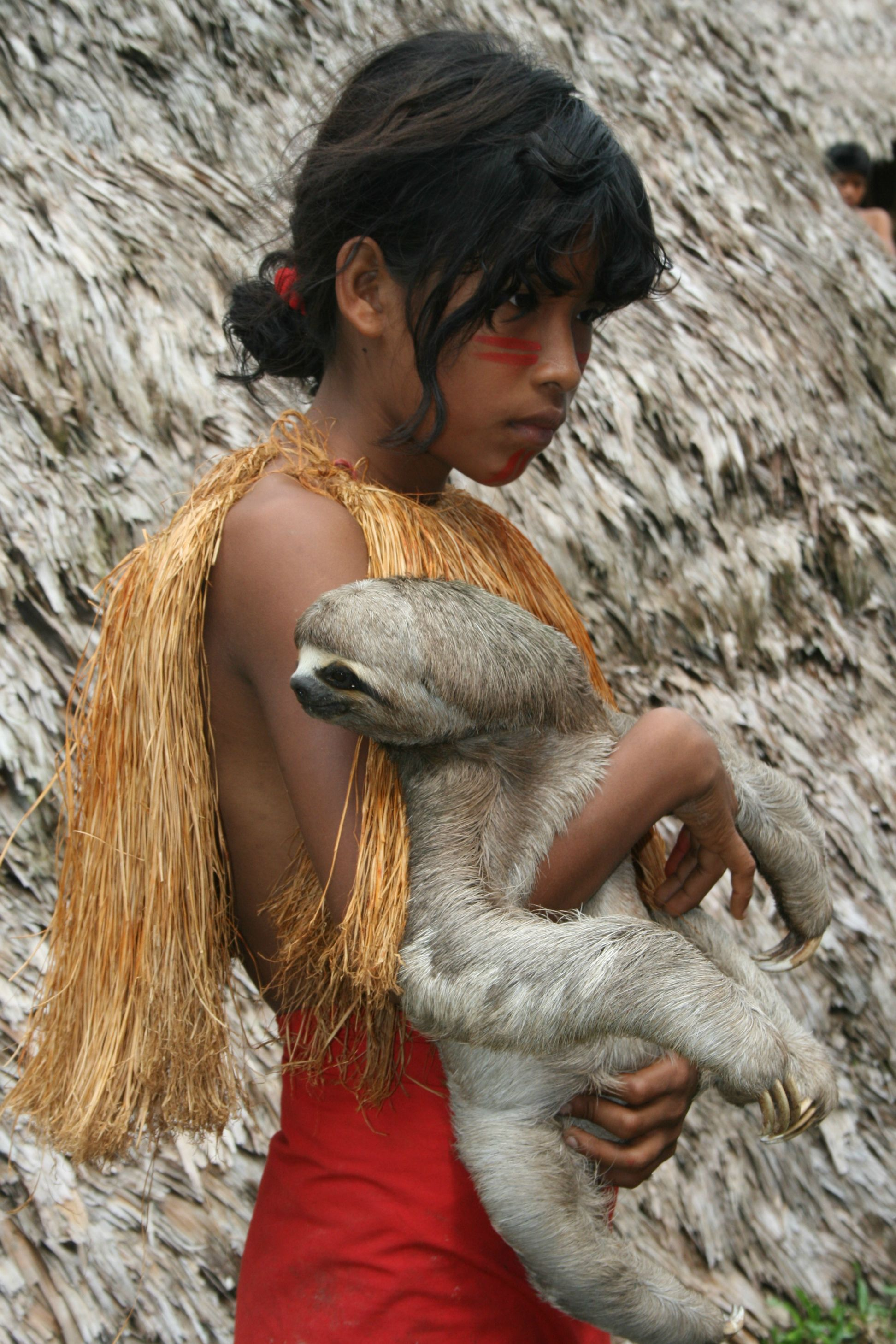 An Amazonian girl and her pet sloth