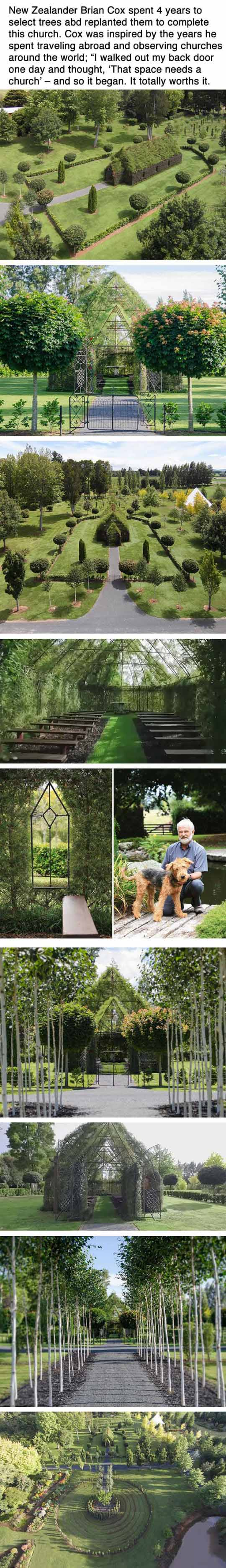 Man Spent Four Years Growing A Church From Trees