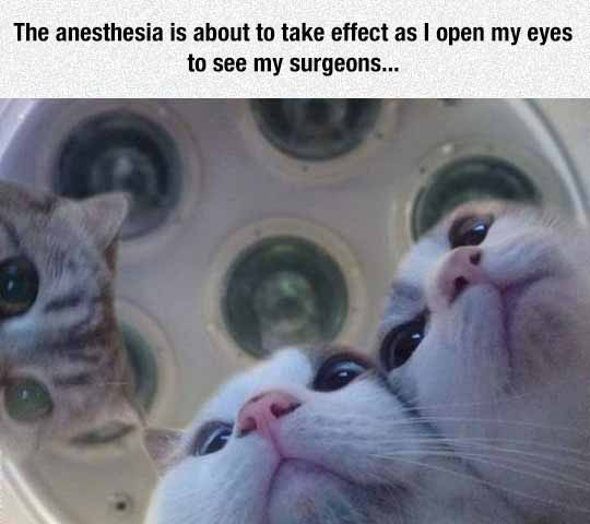 Probably A CAT Scan