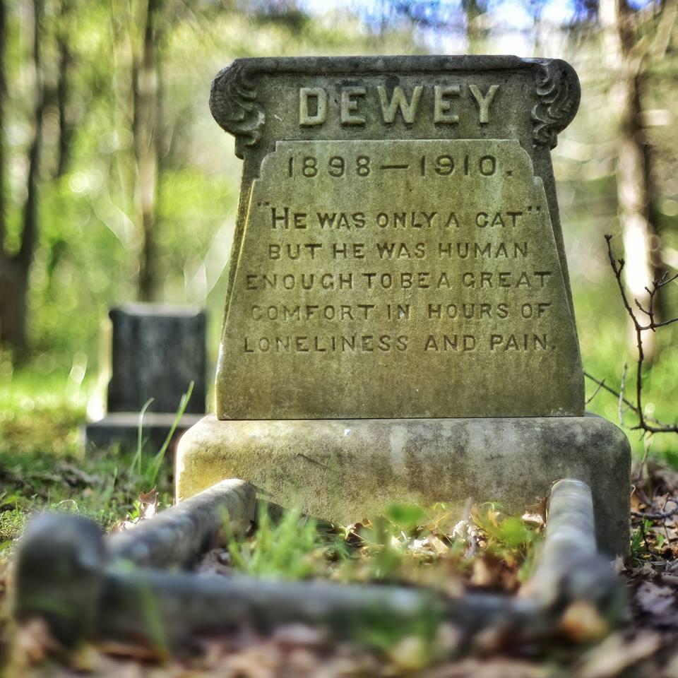 Rest well, Dewey.