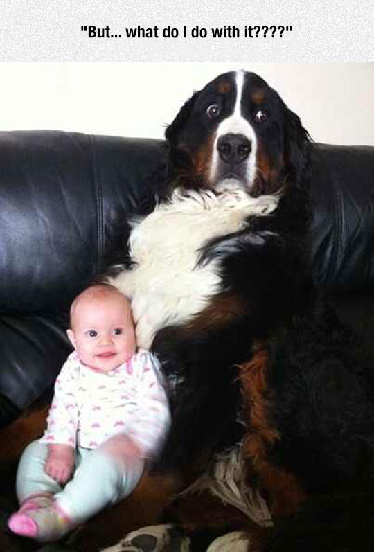 This Is Pretty Much My Reaction When Given A Baby