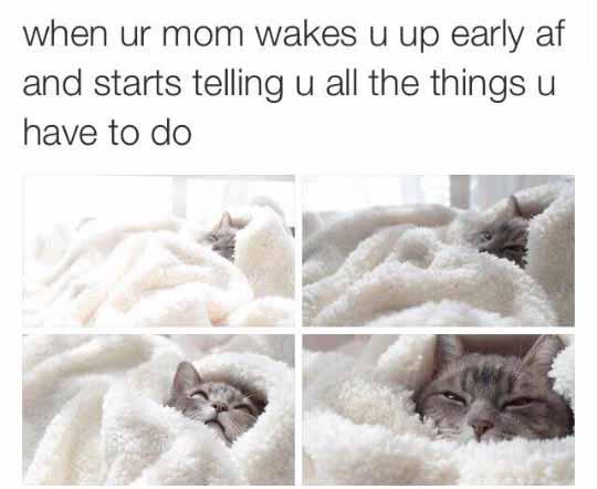 Too Early, Mom
