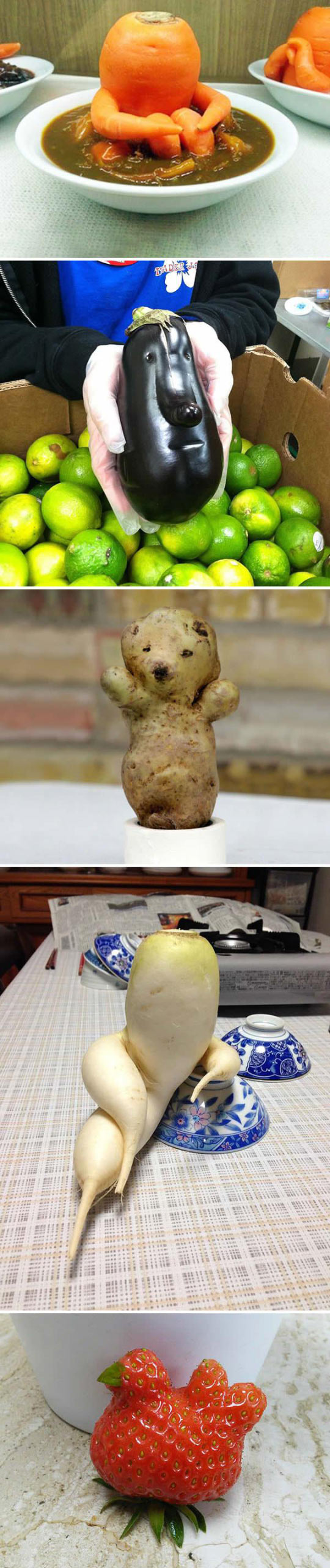 Vegetables That Look Like Something Else