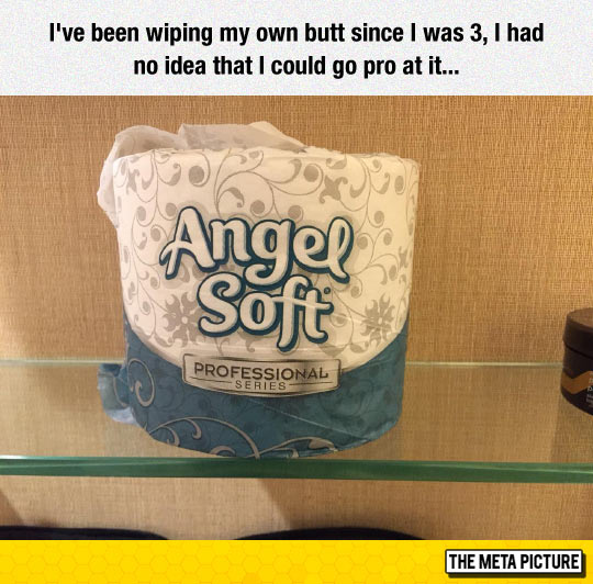 funny-Angel-Soft-toilet-paper-pro