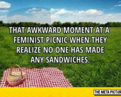 Picnic Disappointment