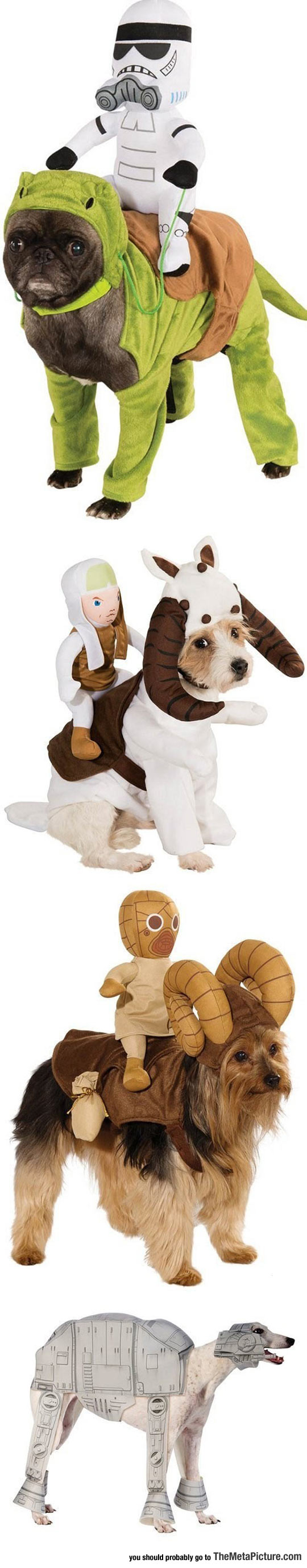 Brilliant Star Wars Costumes For Dogs
