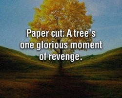 Truth About Paper Cuts