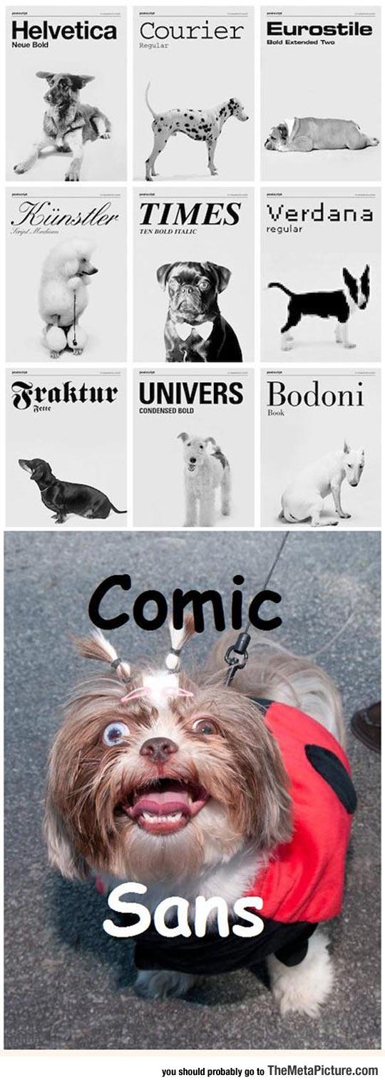 cool-pets-fonts-Comic-Sans-ugly