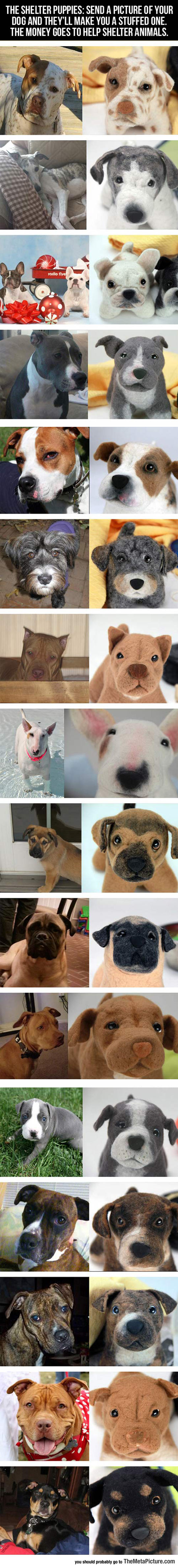 cool-pets-toy-dogs