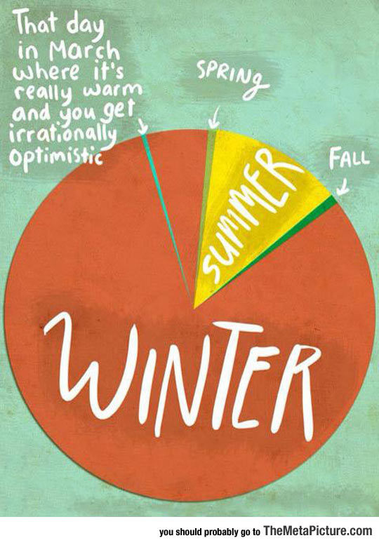cool-pie-chart-seasons-winter