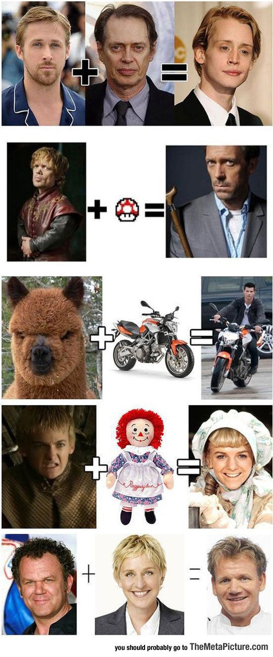 funny-famouse-people-look-alikes-math