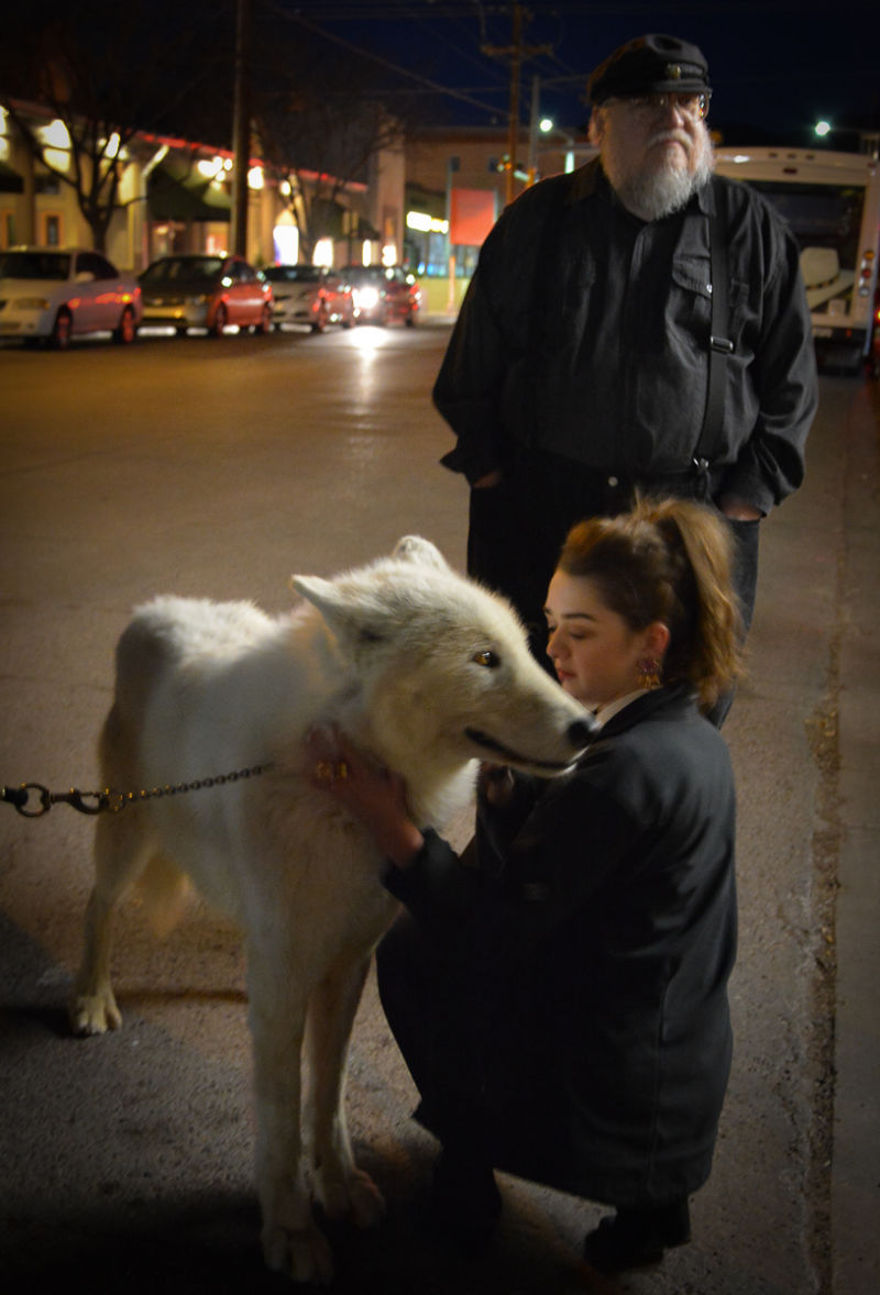 A girl pets the urban dire wolf