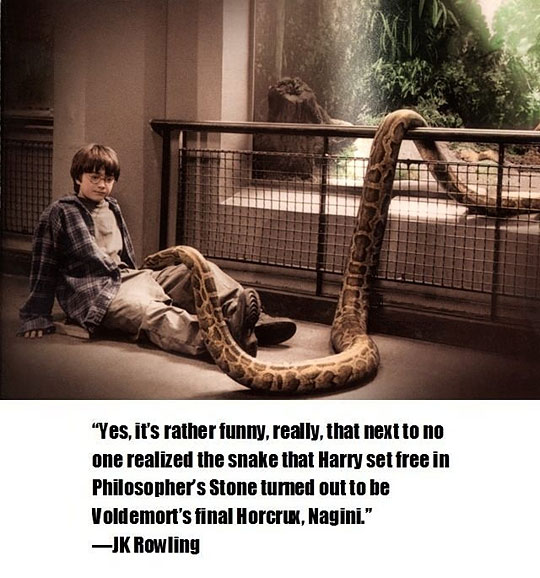 Mind-blowing Harry Potter fact
