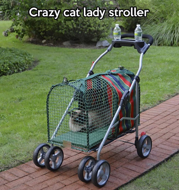 Stroller For Cat People