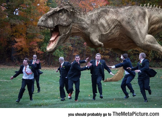 Probably The Best Groomsmen Picture Ever