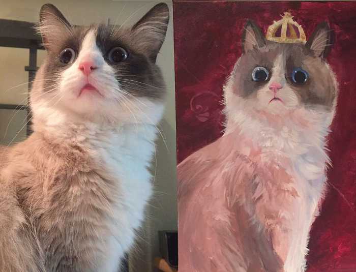 Painted My Cat